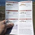 Synthetic Paper for Waterproof Field Guide